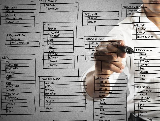 programmer designs database